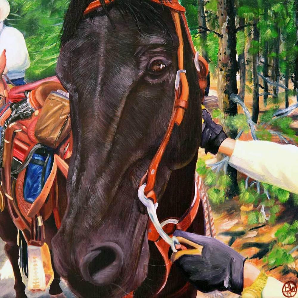 Rocky-Mtn-Horse.jpg