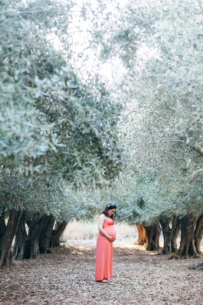 bay-area-california-maternity-session