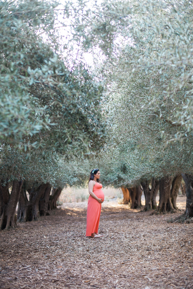 grabriela-bay-area-maternity-photographer-01