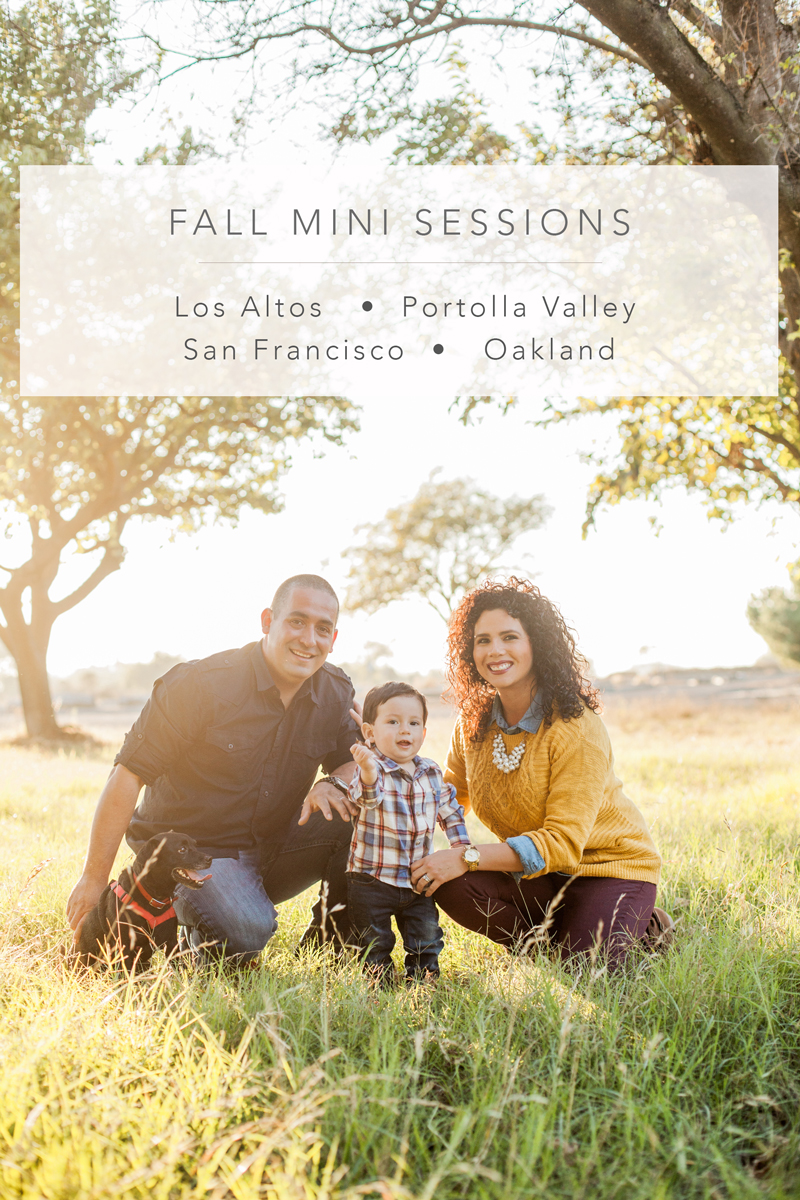 bay-area-fall-holiday-mini-sessions