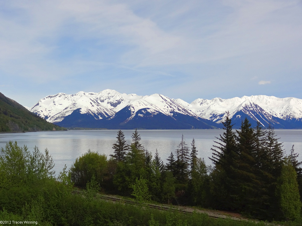 Driving the Seward Highway on an Alaskan Road Trip