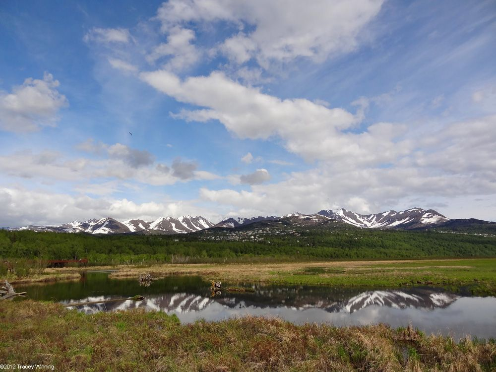 Driving Alaska - Driving the Seward Highway past Potter Marsh
