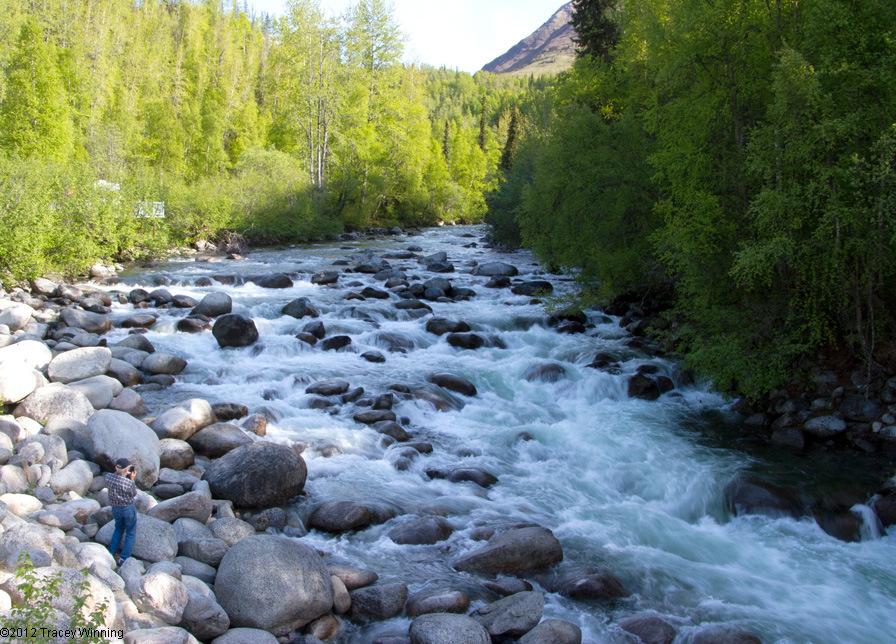 The Little Susitna River begins from Mint Glacier.
