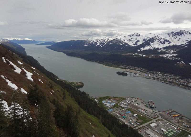 View from the top of Mount Roberts, Juneau