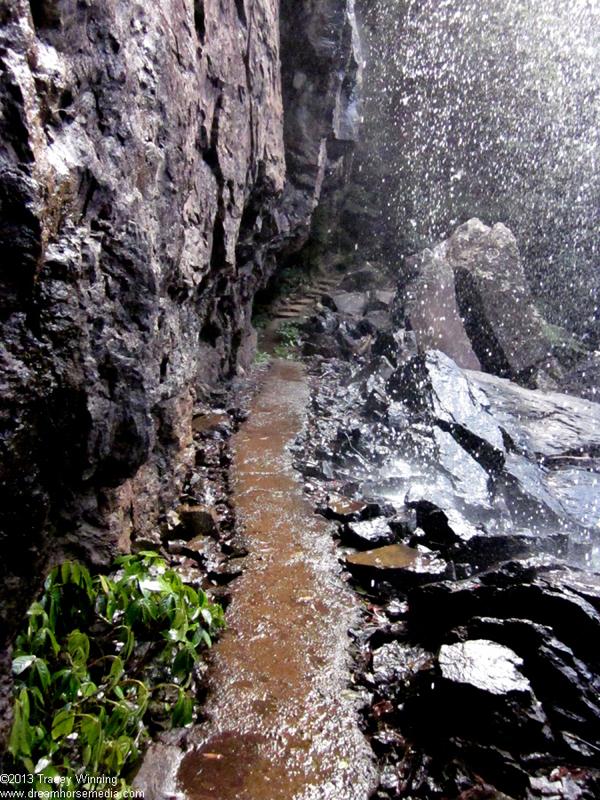 Blackfellow Falls, Springbrook, Lamington National Park
