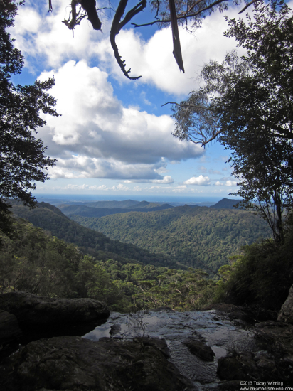 Short Hikes with best views, Springbrook, Gold Coast