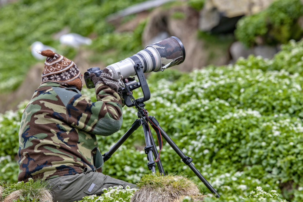 GODE BILDER: Noen er mest opptatt av å få gode bilder av fuglene og har med kostbart kamerautstyr. Andre klarer seg med kikkert eller et mobilkamera.