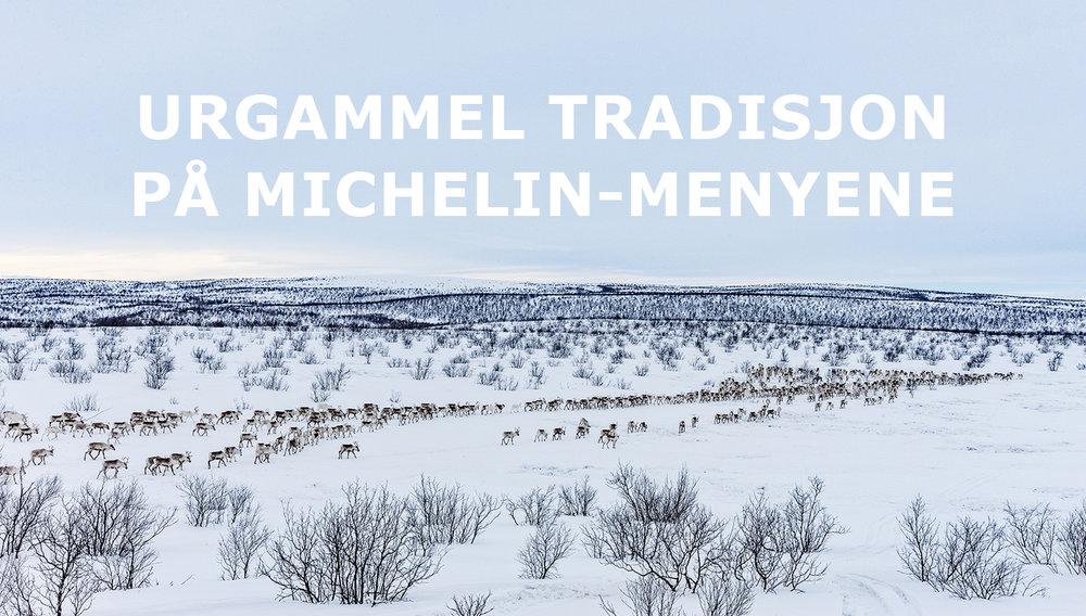 FinnmarkRein01b.jpg
