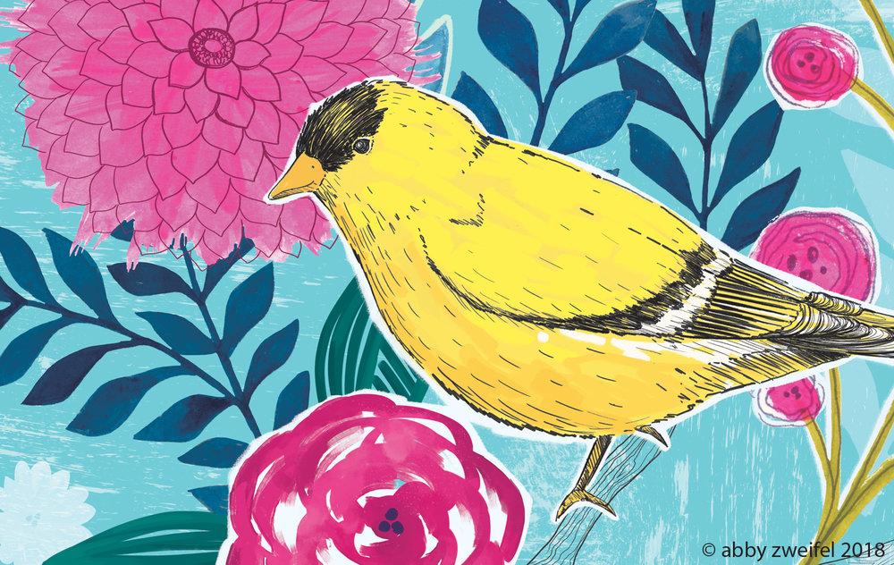 SP18-bird.jpg