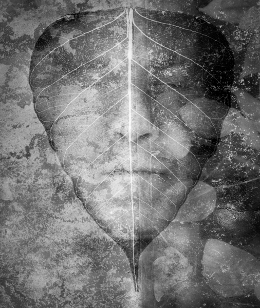 leafman1015-1.jpg