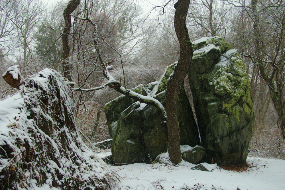 a rocks rock.JPG
