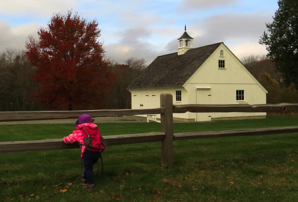 Letourneau-Emily_at_Canonchet_Farm.jpg