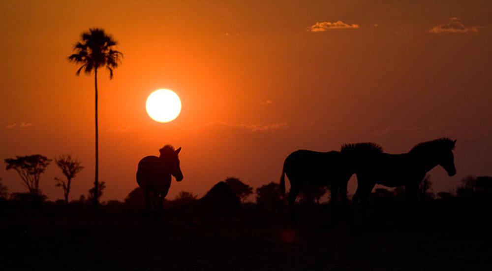 Africa2_0764.jpg