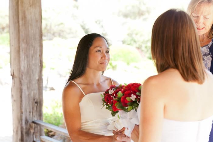 lesbian wedding in santa rosa, ca