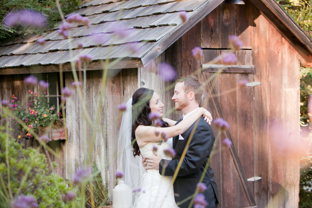 Bride and groom portrait through purple flowers at sebastopol wedding