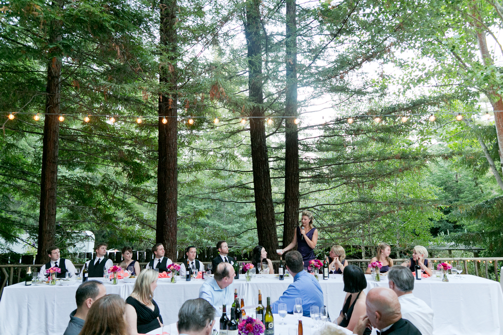 maid of honor giving speech at wedding in sebastopol