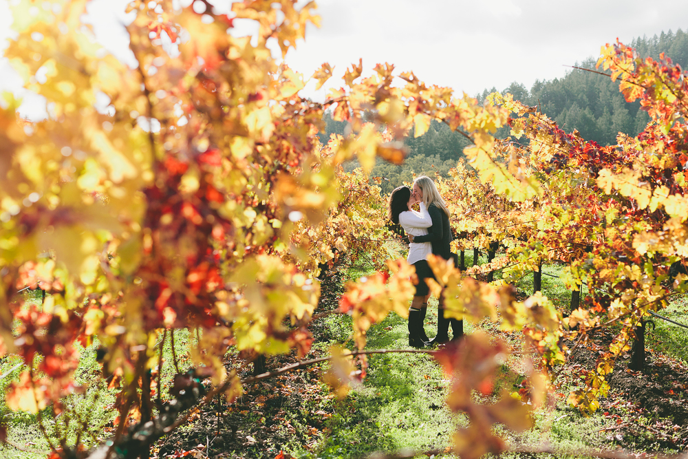 CALISTOGA_PHOTOGRAPHER_SUMMERS_WINERY_ANNIVERSARY_SESSION_4