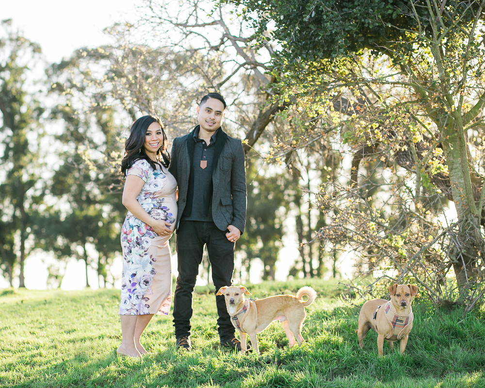 Santa rosa maternity photographer pet photographer