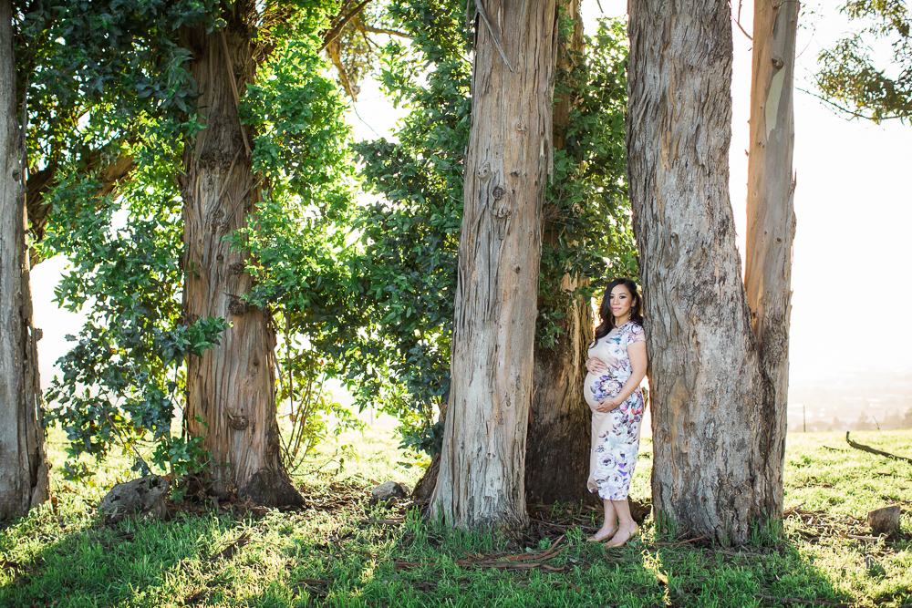 Santa Rosa Maternity Photographer
