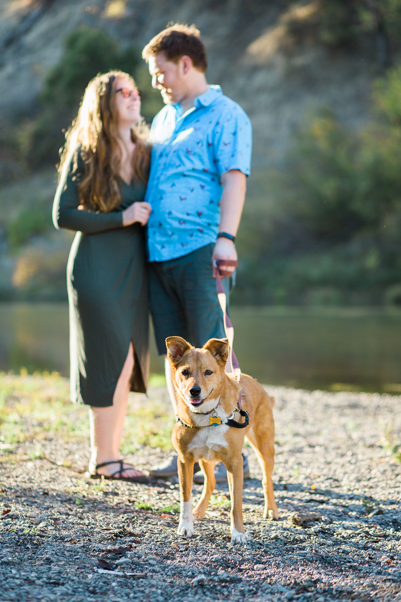 sonoma coast engagement photographer maria villano