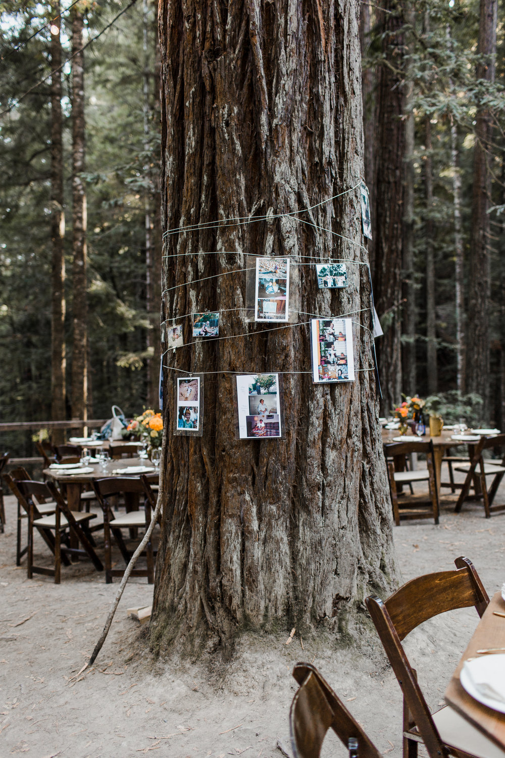 Mendocino Woodlands Camp Wedding