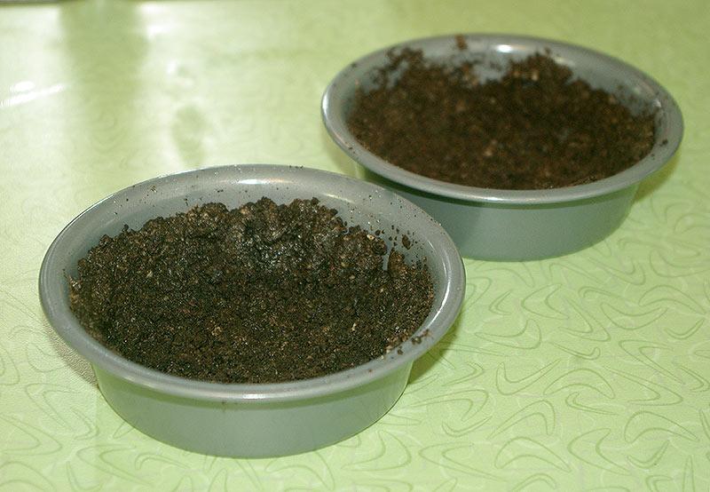 Oreo crust shells