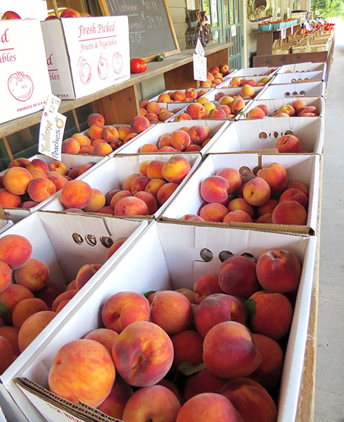 Fresh-picked peaches at the Lull Farm Stand in Milford, NH.