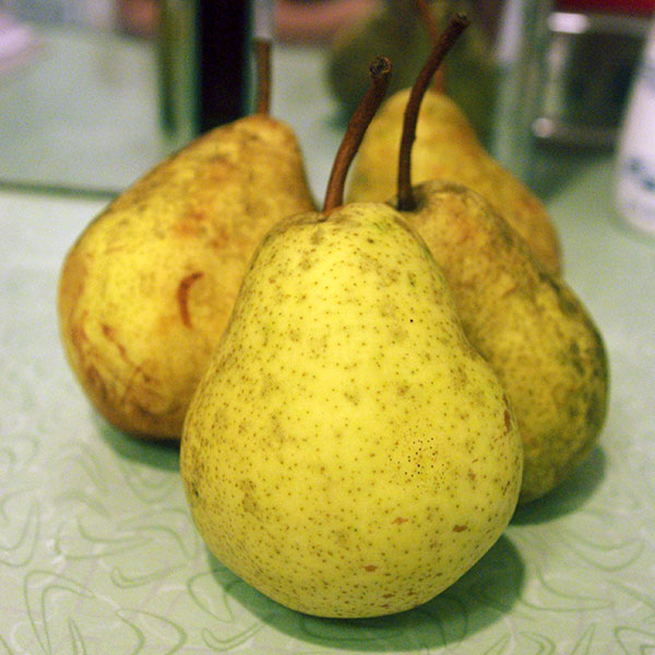 Fresh picked pears