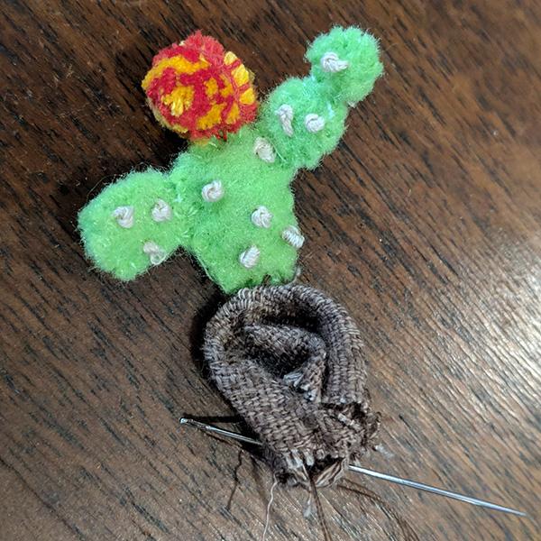 cactus1-dirt2.jpg