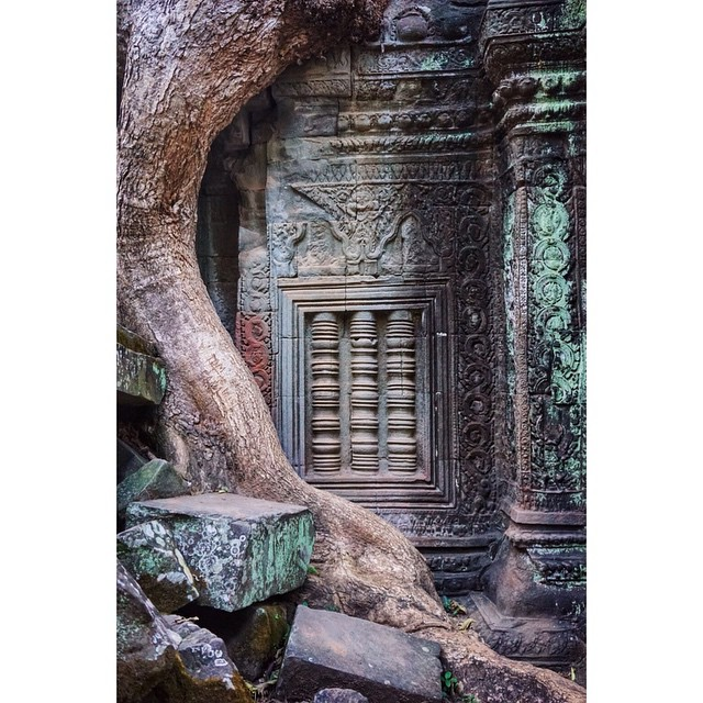 Words, nor photos, can even begin to describe the temples of Angkor. #taprohm #siemreap #cambodia