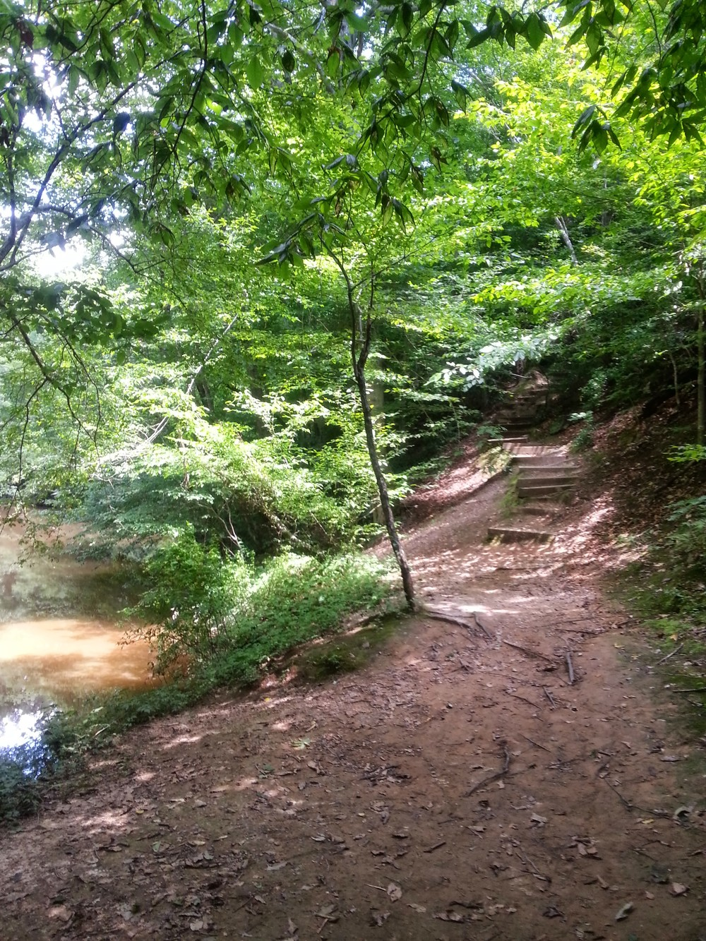 The trail slips away from the river via an unassuming set of stairs.