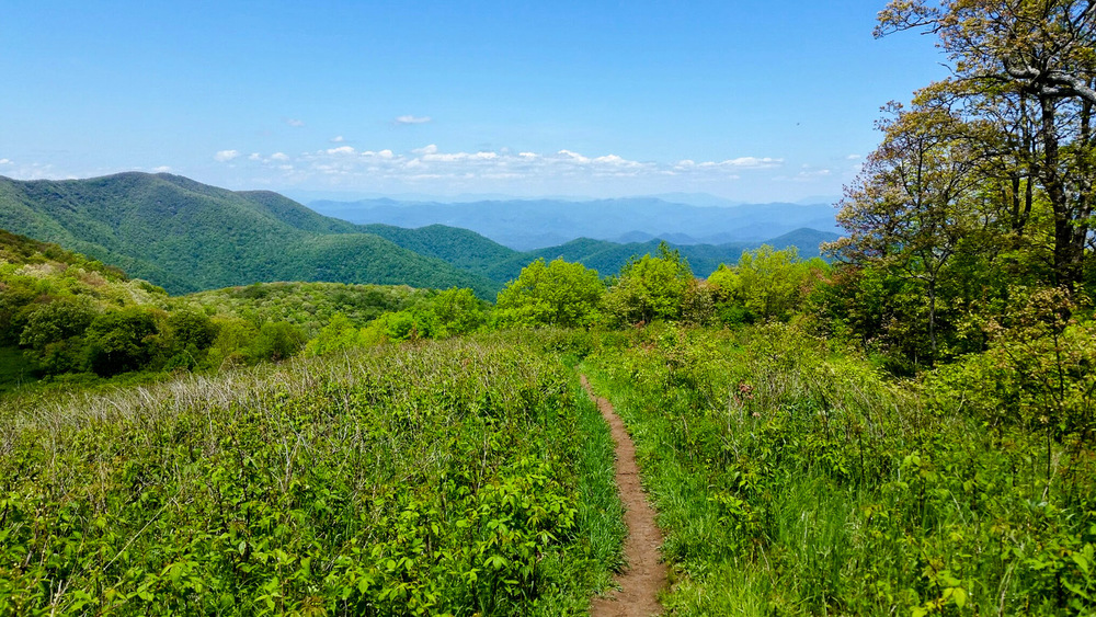 Scenic trails like the Appalachian Trail fall under NPS supervision