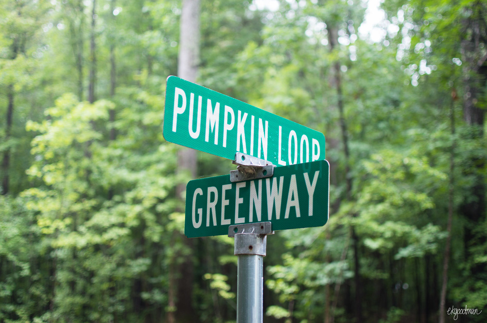 The Pumpkin Loop crosses with a paved greenway in some places.
