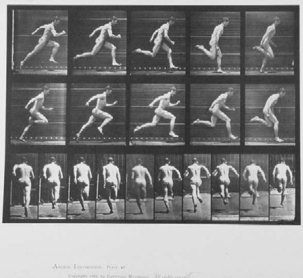 Nude Man Running - Edward Muybridge