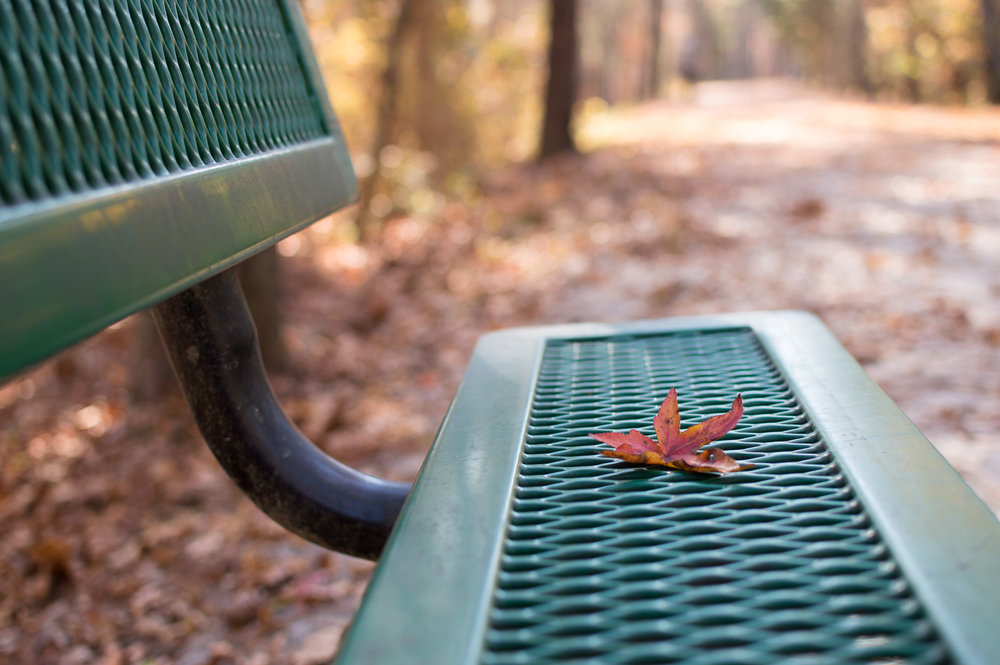 ATT bench