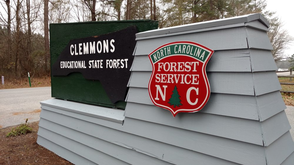 Clemmons State Forest, Clayton, NC