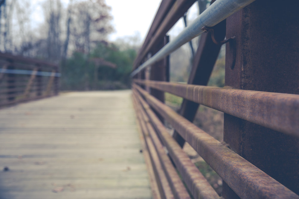 Neuse River Greenway Trail Bridge