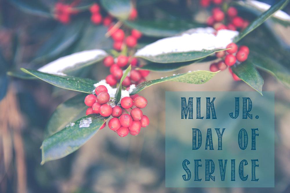 MLK Jr. Day of Service 2017