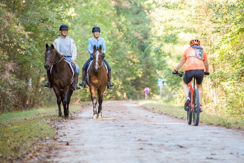 ATT horses