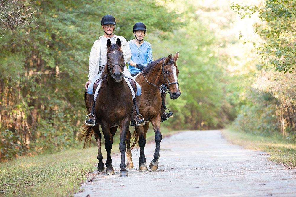 Horses on ATT