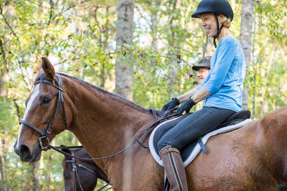 Horses on the ATT