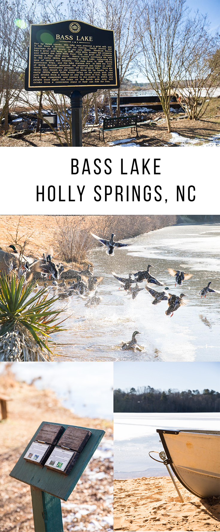 Bass Lake - Holly Springs, NC
