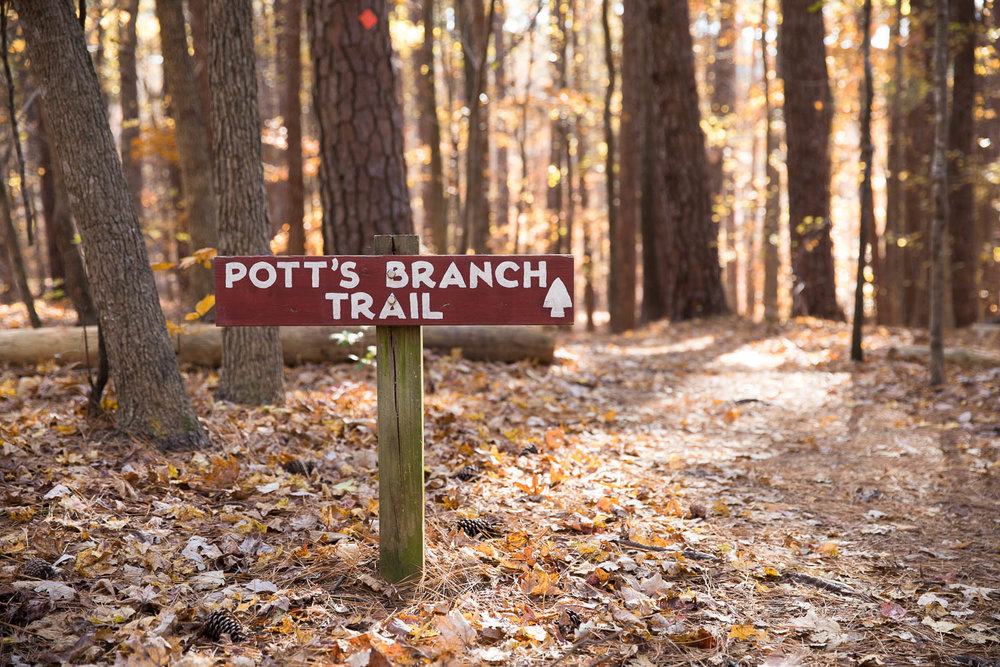 A trail at Umstead State Park