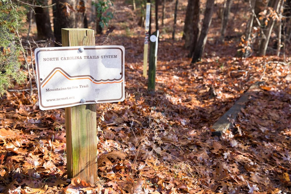 Mountains-to-Sea Trail sign at section hike trailhead near Falls Lake