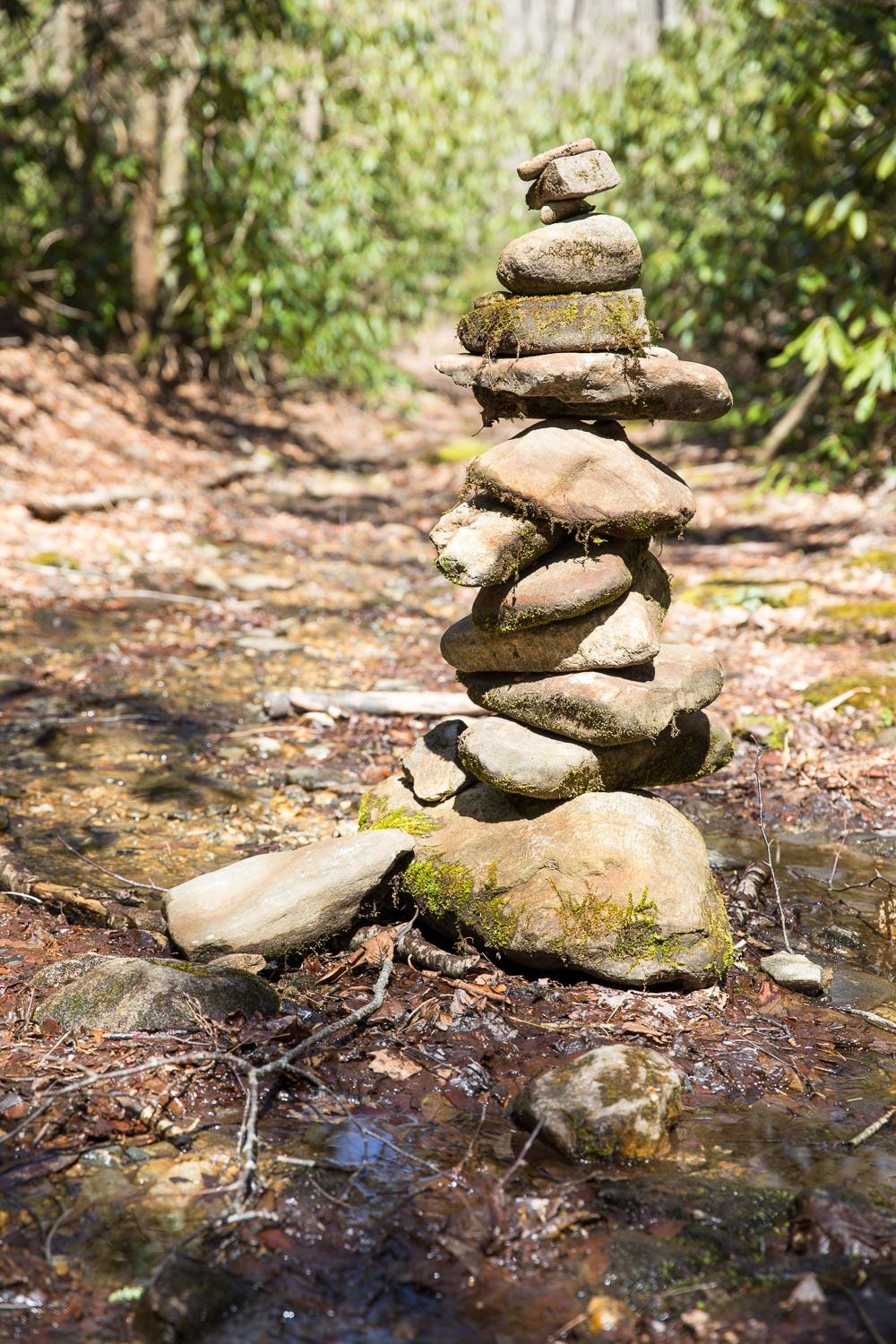 Cairn on Kimsey Creek Trail