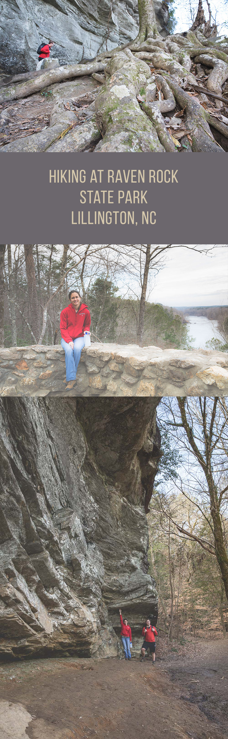 Hiking at Raven Rock State Park in Lillington, NC - a scenic overlook of the Cape Fear River, a rock wall that rises 150 above the river, and plenty of fun boulders to scramble over!
