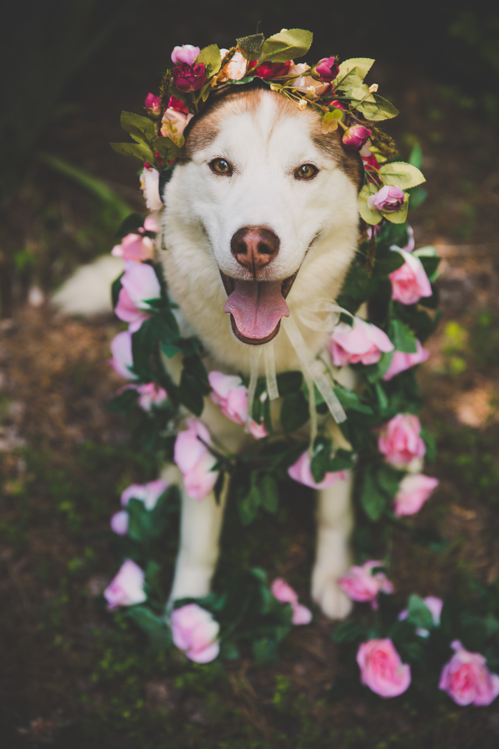 """Do these flowers make me look pretty?!"""