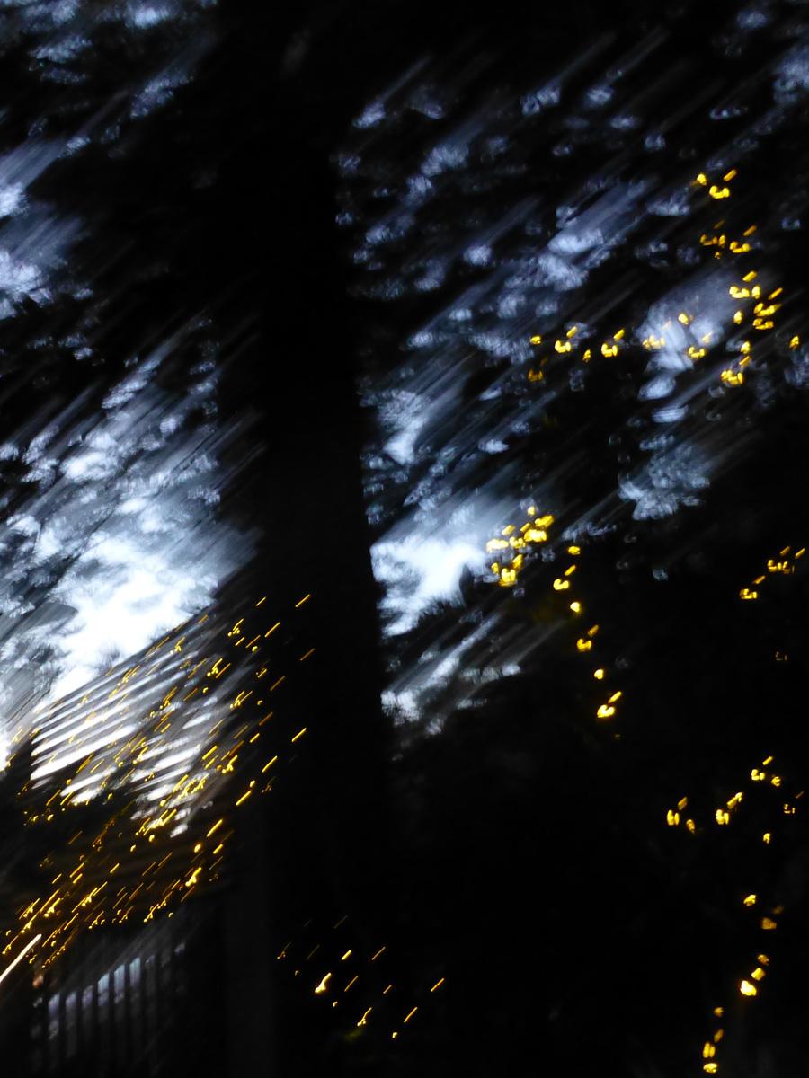 NYE-ilghts2.jpg