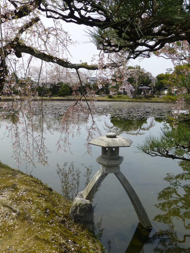 Tsuyama-garden-2.jpg