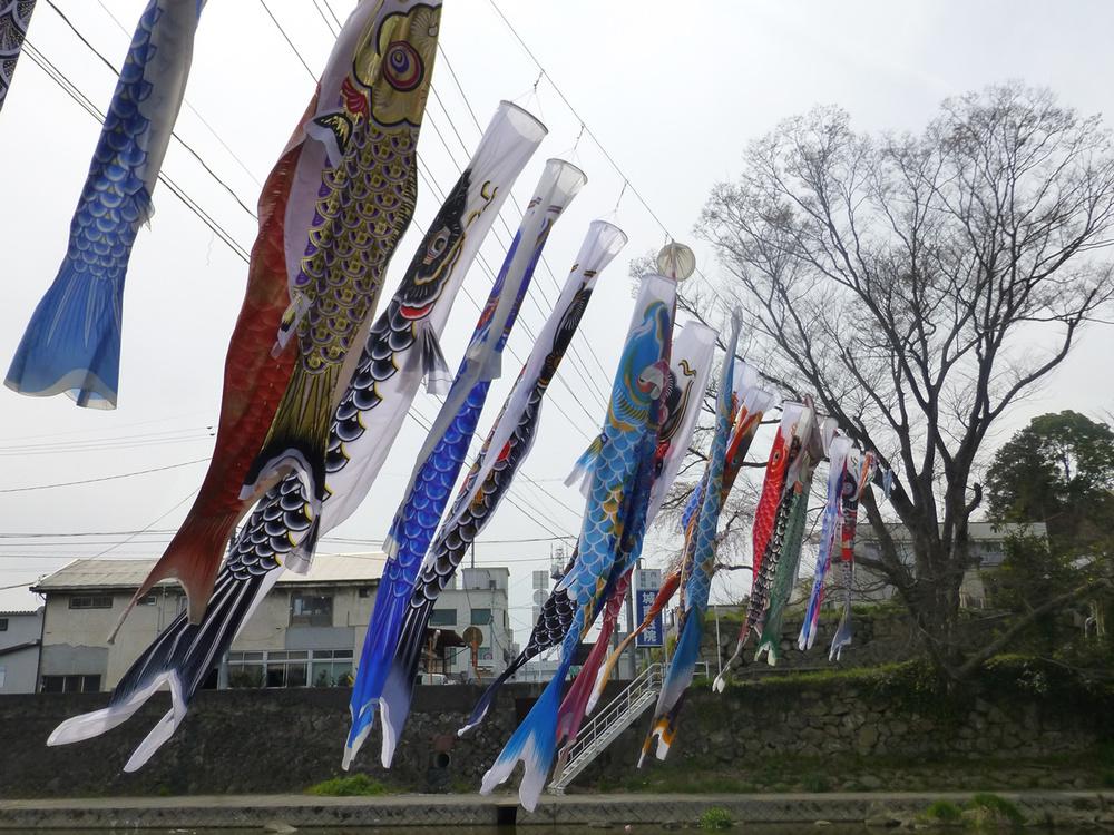 tsuyama-carp1.jpg